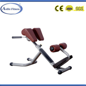 Commercial Gym Exercise Equipment / Back Extension / Roman Chair pictures & photos
