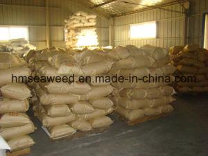 Cotton Rotary Printing Thickener Sodium Alginate