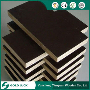 Construction Plywood/ Formwork Plywood/Shuttering Plywood pictures & photos
