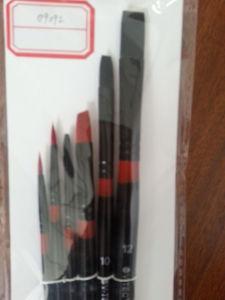 Paint Brush, Bristle Brush, Nylon Brush pictures & photos