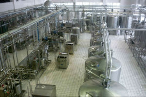 2t/H Milk Production Line pictures & photos