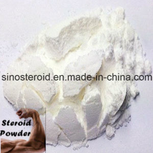 Raw Local Anesthetic Powder Tetracaine Hydrochloride/Tetracaine HCl/Tetracaine