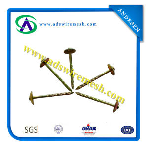 Roofing Nail with Umbrella Head (Hot Sale & Best Quality) pictures & photos