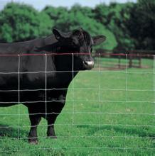 China Supplier Meal Galvanized Wire Cattle Fence for Sale pictures & photos