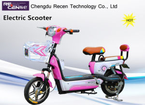 280W-500W Hot Sale Electric Bike Electric Bicycle E-Scooters pictures & photos