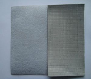 Breathable Fabric Backing PVC Waterproof Membrane pictures & photos