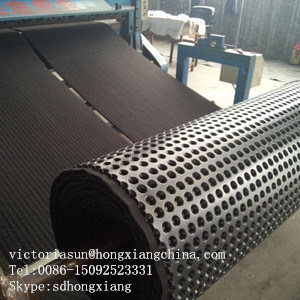 Composite Dimple Geomembrane pictures & photos