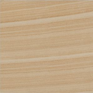 Rustic Tile Sy6605 (600X600mm, 800X800mm) pictures & photos