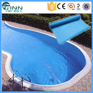 Inground Waterproof PVC Swimming Pool Liner pictures & photos