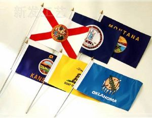 Hand Waving Flag/Customized Hand Flag with Plastic Pole pictures & photos