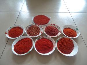 Paprika Powder pictures & photos