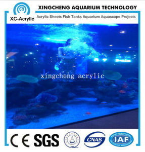 Cell Cast Acrylic Sheet of Aquarium Project Price pictures & photos