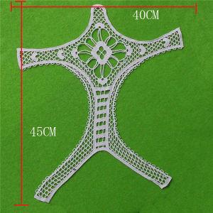 Fashion Embroisry Cotton Lace Collar (cn93) pictures & photos