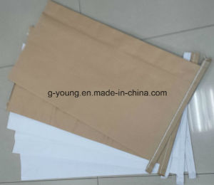 Kraft Paper PP Woven Bag for Packing Fertilizer pictures & photos