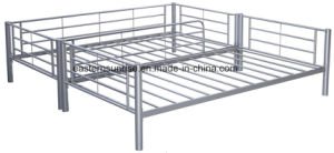 Crazy Sale School Dormitory Bunk Bed pictures & photos