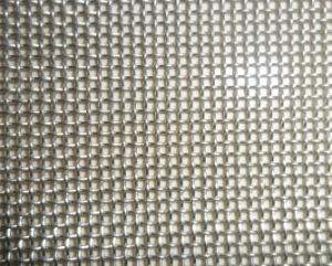 302/304/316/316L Stainless Steel Woven Wire Mesh pictures & photos