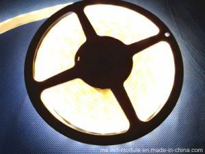 DC12V Waterproof SMD 5050 LED Strip pictures & photos