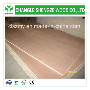 Lowest Price High Quality Plywood pictures & photos
