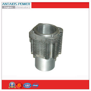 Deutz Cylinder Liner of Deutz Diesel Engine (FL912/913) pictures & photos