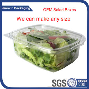 Transparent Disposable Salad Packaging Container pictures & photos