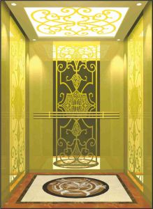 Passenger Lift Passenger Elevator Small Machine Room pictures & photos