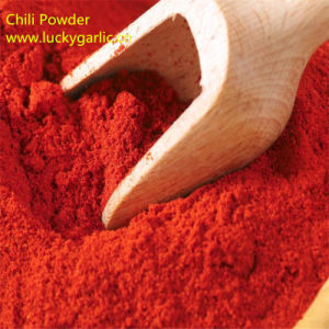 High Quality Sweet Paprika Powder pictures & photos