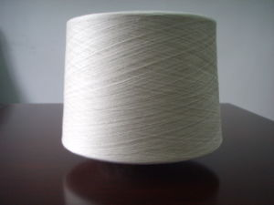 Polyester/Linen 70/30% Ne 30s Yarn for Weaving