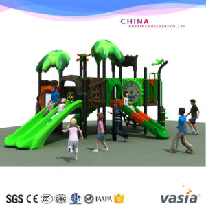 Vasia Straw Series Enjoyable Outdoor Playground pictures & photos