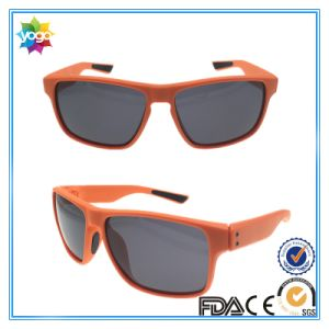 2017 New Fashion Women Cat Eye Sunglasses Classic Designer