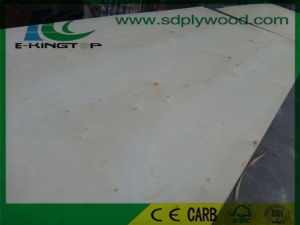Birch Plywood E Grade Back for USA Furniture Market pictures & photos