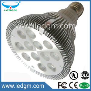 CE RoHS 12W LED PAR38 Lamp Light Por Lampara pictures & photos