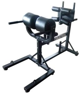 Fitness Equipment GHD Bench/Roman Chair/Glute Ham Developer pictures & photos