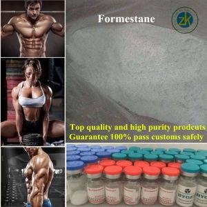 Lentaron Formestane Formestane Antineoplastic Crude Drug pictures & photos