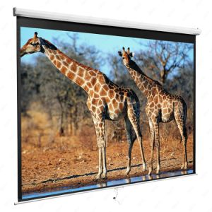 "150""4: 3 Manual Screen, China Projector Screen with Flat Surface pictures & photos"