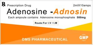 Adenosine 5′-Monophosphate Injection GMP Factory pictures & photos