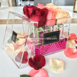 Factory Manufacturer Clear Acrylic Flower Box with 9 Roses pictures & photos