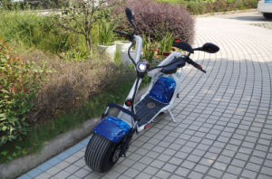 18*9.5 Fat Tyre with Front and Rear Shock 1000W Citycoco Scooter (JY-ES005) pictures & photos