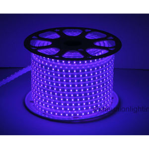 High Voltage LED RGB LED Strip Light -Su-Hvsmd5050-72PCS-RGB/Pink 10W/M