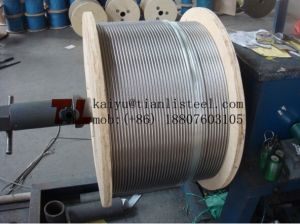 AISI316 1X19 Stainless Wire Rope pictures & photos