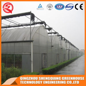 Agriculture Multi Span Indoor Growing Tent Plastic Film Greenhouse pictures & photos