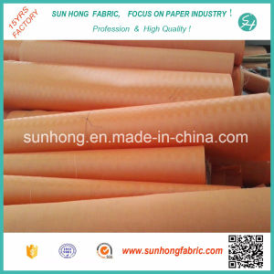 Polyester Desulfurization Mesh in Horizontal Vacuum Belt Filter pictures & photos