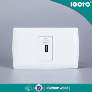 L105u American Standard USB Plug Charger Power Point Electrical Wall Switch and Socket pictures & photos