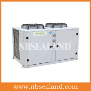 European Style Condensing Unit for Cold Storage pictures & photos
