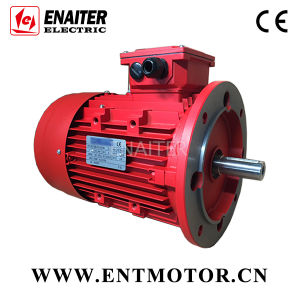 Classic Special Electrical Motor pictures & photos