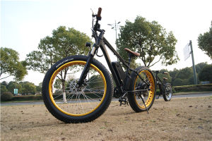 48V 1000W 26′x4 Electric Fat Bike with Bottle Lithium Battery for Adults pictures & photos