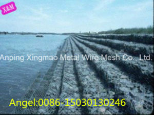 2X1X1m Galvanized Hexagonal Gabion /Gabion Box From China Factory pictures & photos