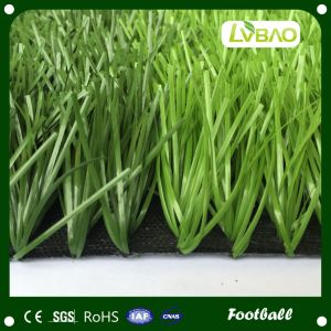 W-Shape Monofilament Yarn Artificial Grass for Football Field pictures & photos