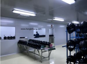 Fixed-Gun Automatic Spray Coating Line for Helmets pictures & photos