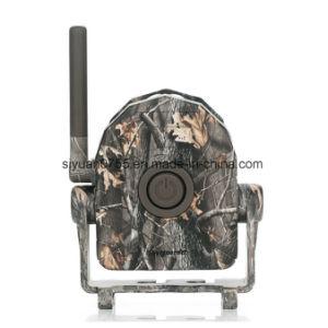 Wireless Alarm Sensor Waterproof Sy-007 Bestguarder pictures & photos