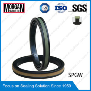 High Pressure Spgw/Phd Type Hydraulic Cylinder Piston Seal Ring pictures & photos